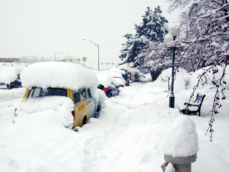 Cars Under A Snow Blanket Including The Fire Hydrant